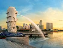 Thăm vườn thú đêm đầu tiên trên thế giới khi mua vé máy bay đi Singapore.