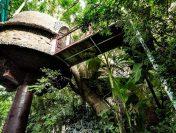 Nhà cây địa điểm khám phá độc đáo tại Hà Nội