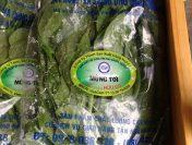Cùng rau hữu cơ HB sức khỏe tăng cường