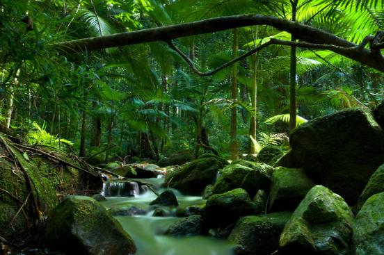 Giá vé máy bay đi Úc để tham quan thiên nhiên