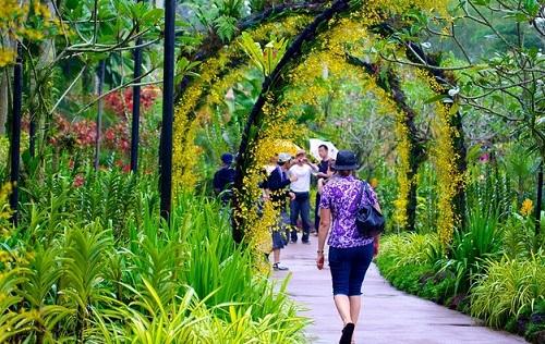 ve-may-bay-di-singapore